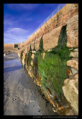 'Green as Seen' - Jersey (jerseyimage) Tags: greatbritain seaweed color colour green tourism beach wet wall outside outdoors coast sand day britishisles sunny bluesky seawall jersey granite lowtide february railings channelislands verticle stouen jerseyimage channeislands