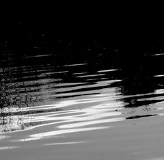Sunset at Gila Springs subdivision #3 (kevin dooley) Tags: sunset arizona bw favorite lake southwest reflection water phoenix beautiful wow us interesting fantastic pond flickr pretty very good gorgeous awesome award superior super best most springs winner stunning excellent manmade much suburb chandler incredible breathtaking exciting gila subdivision phenomenal valleyofthesun