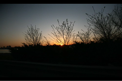 west side sunset ride (sgoralnick) Tags: nyc sunset newyork motion silhouette skyline movie moving video driving riding jersey motorcycle canon5d westside westsidehighway phillipckim radicalfashion fromamovingmotorcycle time:hour=7pm
