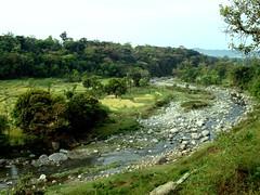 Dharamsala Himachal Pradesh (albert_8) Tags: himalaya himachal dharamsala mcleod