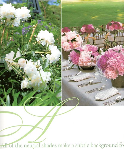 passion for parties- peony party