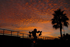 """""""Morning exercise""""  (Y. Peter Li Photography) Tags: morning light sky sculpture orange tree halloween clouds sunrise fence dawn airport san exercise diego palm great123"""