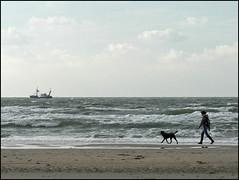 Before the storm (Yolande...) Tags: sea dog holland beach strand boot boat zee hond explore ijmuiden supershot mywinners superbmasterpiece theresaheavystormcominguphereinthenetherlandsthisshotwasmadeearlierthisweek
