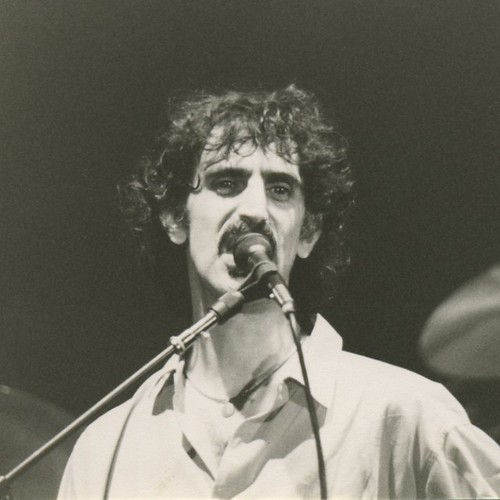 Zappa #4