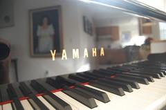 Piano Reflection...