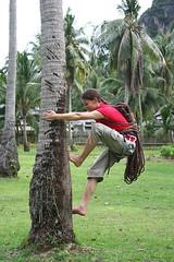 Climbing a Palm Tree - Railay Diamond Cave.jpg