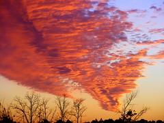 Dripping Orange (dogwoodtree) Tags: sunset sky orange clouds louisiana moments magic weatherphotography platinumphoto anawesomeshot firsttheearth irrestiblebeauty naturewatcher platinumphotography