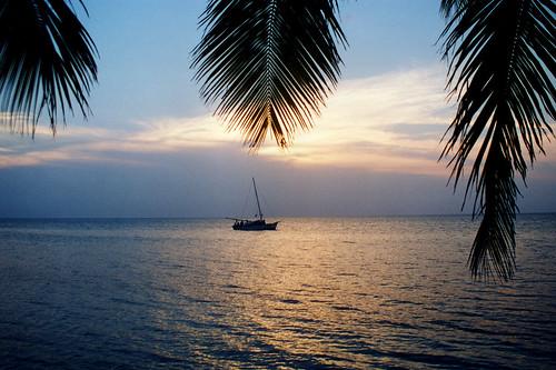 sunset water sailboat solitude belize tranquility tropical palmfronds windsandandwater unlimitedphotos