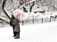 Untitled (Pabo76) Tags: nyc winter red snow ny newyork love umbrella hearts centralpark manhattan best gothamist 2008 nueva