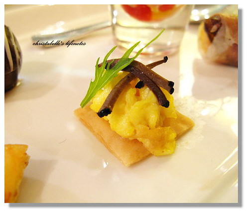 curtis stone 松露蛋 truffle egg