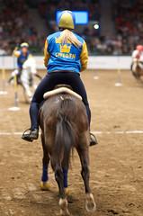 Gteborg Horse Show, 2008 (GreggBK) Tags: horses sports gteborg nikon sweden gothenburg d70s sverige nikkor horseshow rider equestrian hst hstar 85mmf14d feiworldcup mountedgames ridsport gteborghorseshow gpponnyn jumpingaccumulator