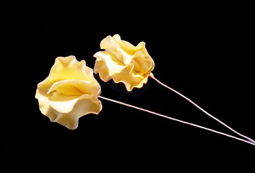 sweatpea flower