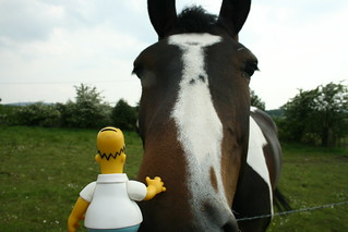 Homer strokes a horse....then it bit him 132/365