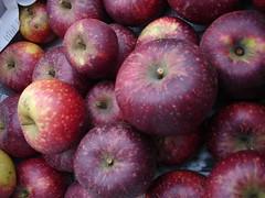 Ingrid Marie (polaroidmemories) Tags: rot ingrid apple marie apfel pfel