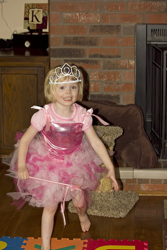 t modelling the princess dress