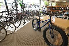 Universal Cycles new location-4-4