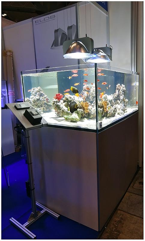 Aquarama_2011-089