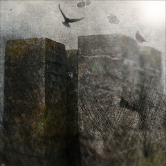 a dream of the towers (Ando : @_AndoPerez) Tags: light texture grunge towers dream crow crows alchemy secretrecipe apotropaico justaddblue
