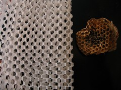 paper cut; kirigami honeycomb (polyscene) Tags: sculpture art paper paperart 3d pattern cut bee relief honey polly hexagon kirigami folded tess fold poly bas honeycomb tessellation comb papercut vellum tracing basrelief verity papersculpture polyscene pollyverity 3dpattern papercutkirigami