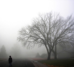 Lone traveller (AzRedHeadedBrat) Tags: morning autumn trees boy mist fall nature leaves fog midwest bravo foggy son heartland kansas smithcenter sharleneshappart