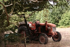 tracteur (ilgigrad) Tags: old tractor tree rural farm album country champs campagne arbre ferme champ vieux tracteur gettyimagesfranceq1