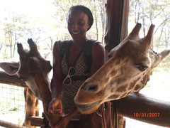 Feeding two giraffes 2