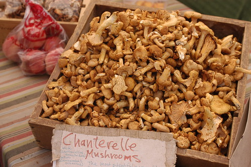 chanterelles from Jeremy