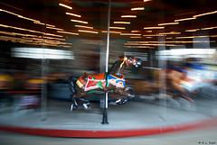 Carousel Horse, Central Park (rjseg1) Tags: horse newyork centralpark carousel segal pentaxk10d