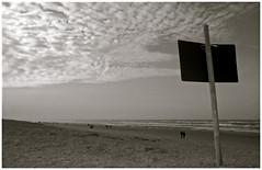 Noordwijk (www.hansvink.nl) Tags: beach strand zee zon noordwijk