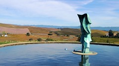 Fountain of Wayne (cwgoodroe) Tags: color nature fountain oakland bay wine sandiego vine honduras saturation area sfchronicle96hrs