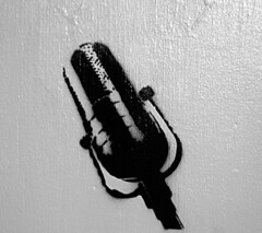 DSC_0079 (jreidfive) Tags: vintage graffiti virginia stencil paint downtown graf spray roanoke microphone