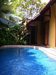 Villa De Daun 泳池