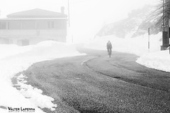 Gelida volata (MadDemon) Tags: abruzzo campotosto campotostolake strada ontheroad winter montagna inverno neve freddo bicicletta ciclista ciclismo laquila nikon nikonclubit nikonflickraward italia fotografia