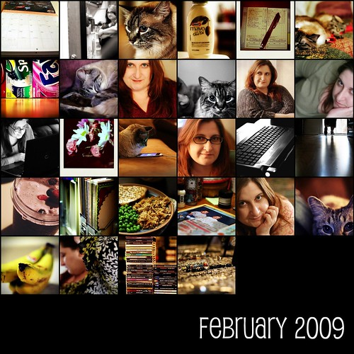 February 2009  [project 365]