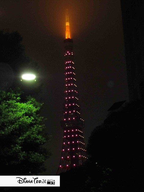 tokyo tower 02
