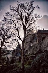 Burg Eltz (Frank van Eck) Tags: germany burgeltz hdr 6270 wierschem rhinelandpalatinate hdrset