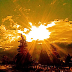 Sun Bible! (Denis Collette...!!!) Tags: sun canada love photography soleil bravo photographie quebec son amour qubec bible interactive revolutionary videoclip fils admiration firstquality magicdonkey impressedbeauty intractif deniscollette arcadefireneonbible christophecollette directionofphotography improudofyou rvolutionaire jesuisfierdetoi world100f