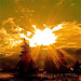 Sun Bible! - by Denis Collette...!!!
