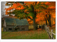 Old Green Barn (LeFon) Tags: canada fall barn quebec wisdom soe blueribbonwinner flickrsbest lefion mywinner superbmasterpiece thegoldendreams goldstaraward paysagesduqubec