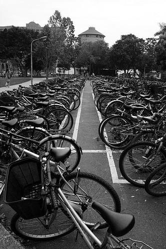 自行車是校園王道
