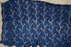2103731677 ee541df826 m Well, Yeah, Its a Shawl    But Which Shawl?