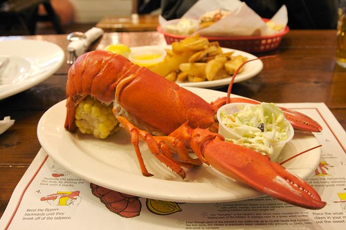 Steamed Lobster - Old Port Lobster Shack