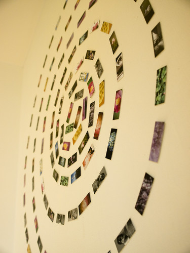 MiniCards make the show, above, by yocca