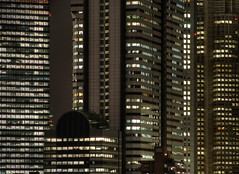 Tokyo 685 (tokyoform) Tags: city windows cidade urban japan skyline architecture night dark 350d japanese tokyo noche shinjuku asia cityscape skyscrapers nacht cityhall ciudad tquio stadt noite   japo gotham nuit japon  ville kota darkcity citt tokio  stadtbild paisajeurbano japn tmg   paisagemurbana     japonya   nhtbn paesaggiourbano tokyocityhall paysageurbain jongkind             chrisjongkind   tokyoform darkcityscape