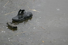 A black rubber sandal sits on a frozen lake.