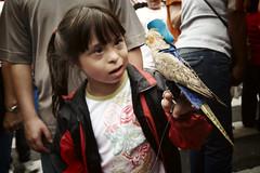 Periquito liiiiiiiiiindo... (poperotico) Tags: bird brasil geotagged kid child saopaulo liberdade pássaro down syndrome criança rato bairro praca festividades sigma1020 anonovochines terceiroano rolefotografico clickspanodorato
