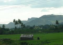 A shack on farmland (Nagesh Kamath) Tags: nature sony dsch2 krishnagiritrip
