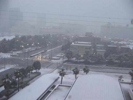 tn_東京雪景 (5)