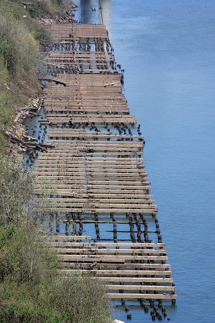 derelict dock, from ross island bridge