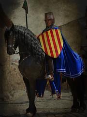 l'escut (Seracat) Tags: canon medieval catalunya montblanc caballero escut setmana concadebarber cavaller setmanamedieval seracat